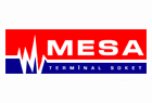 mesa-brand.png